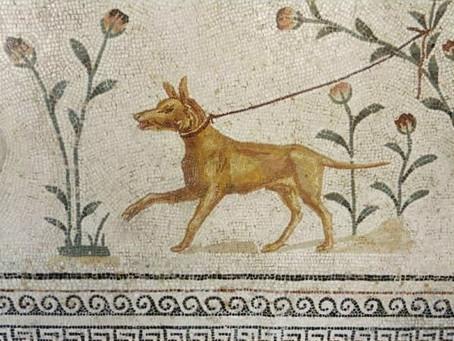 Jeste li znali da su stari Rimljani gradili grobnice za svoje pse? Evo što su im pisali