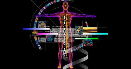 생명체 사용설명서, 유전자 지도!