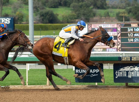 10 Racehorses Named After Sports Players & Athletes