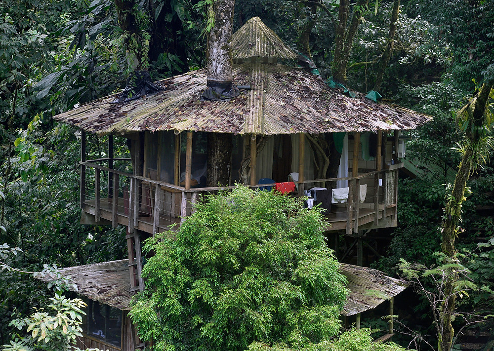The legendary treehouse at Finca Bellavista