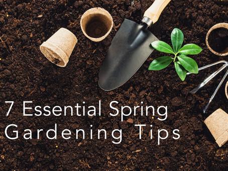 7 Essential Spring Gardening Tips