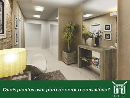 Quais plantas usar para decorar o consultório?