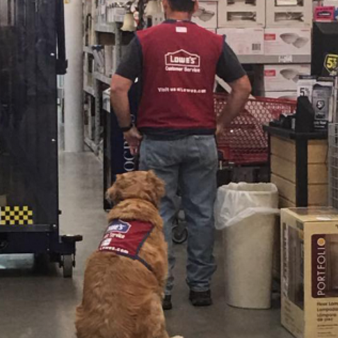 Lowe's Hires Veteran and His Service Dog