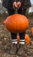 Halloween Bonfire and Pumpkin Carving!