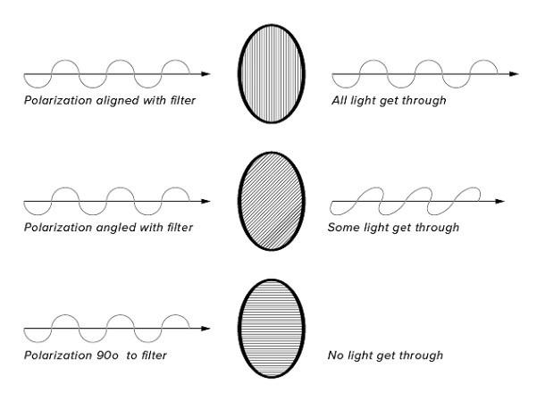 ภาพแสดงประสิทธิภาพของเลนส์ที่เคลือบโพลาไรซ์ ช่วยลดแสงที่ทะลุผ่านเลนส์