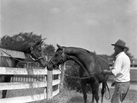 The Story of Dustwhirl, the Dam Of Whirlaway