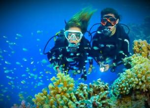 Дайвинг на о. Бали от 500$, октябрь 2020