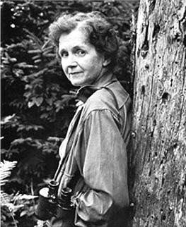 Historic Highlight: Rachel Carson