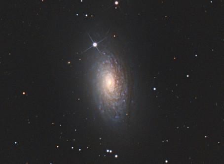 Galaxie du Tournesol & Quasar !