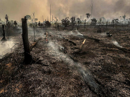 En Amazonie, le territoire presque perdu des Tenharims