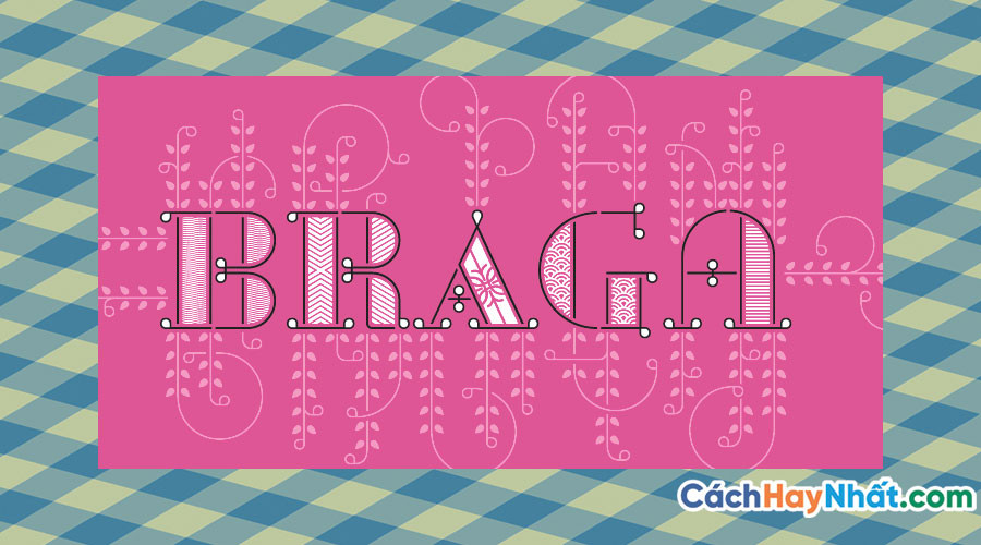 Braga Font Family - 24 Fonts Free