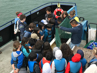 Discovery Voyages during Marine Science Camp