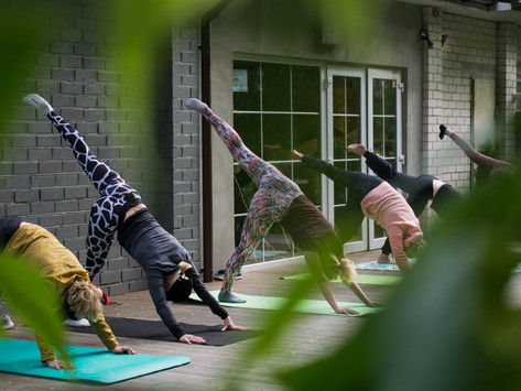 Formation de yoga : je réponds à vos questions!