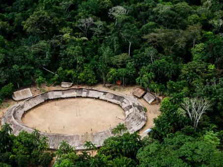 Estudo revela a importância da terra indígena na mitigação do clima