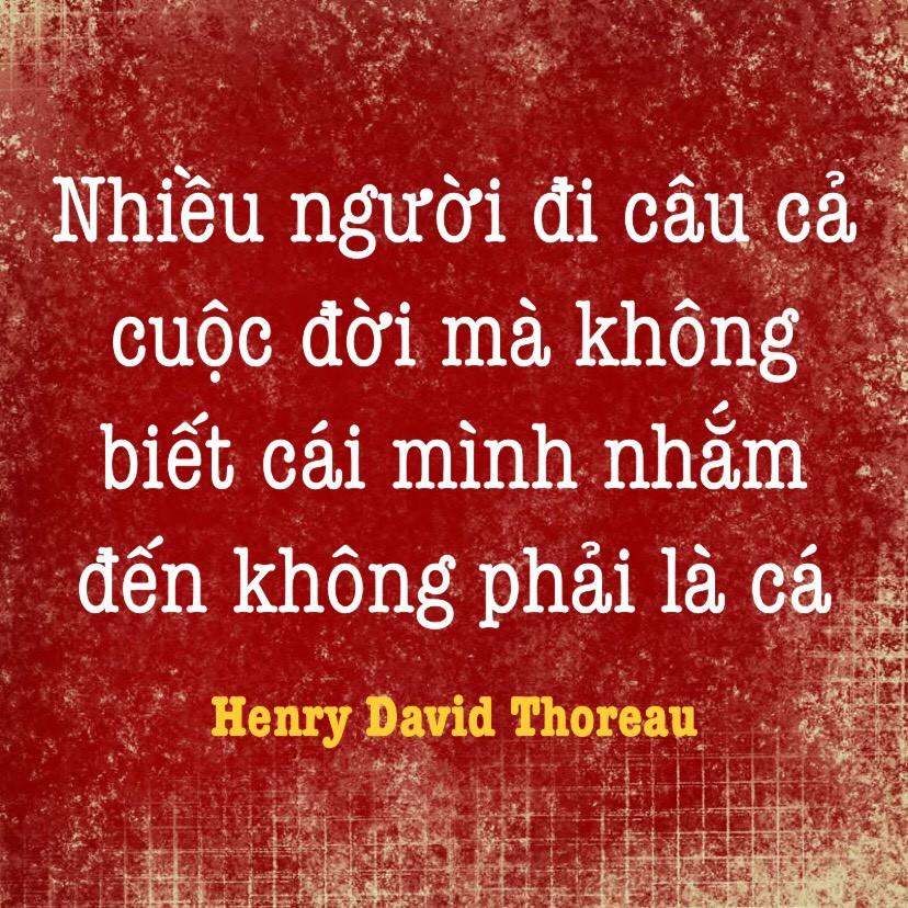 Ý nghĩa cuộc sống Henry David Thoreau