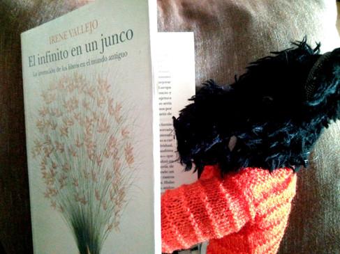 """""""El infinito en un junco"""": Mil mundos en un libro"""