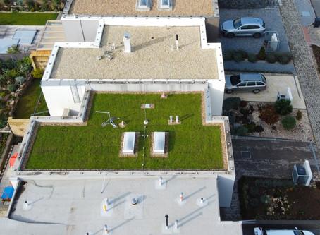 Zelená střecha od dotace k realizaci