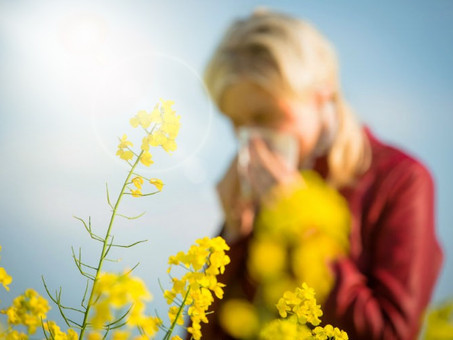 Alleviate Summer Allergies with Laser Therapy & Supplements We Recommend