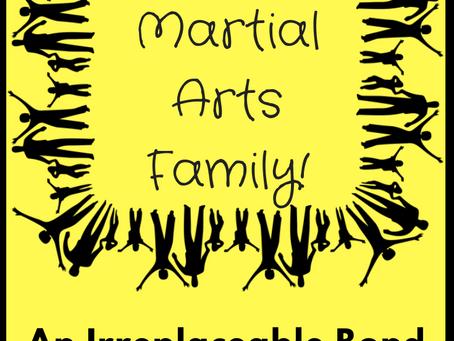 My Martial Arts Family