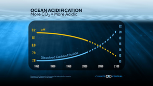 oceans, acidification, global warming