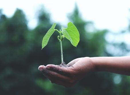 Il Network Marketing un' Attività che ti Avvicina alla Crescita Personale