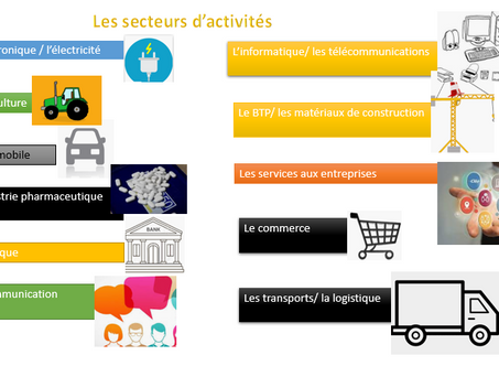 French for Business: Fields of work in French: les secteurs d'activité