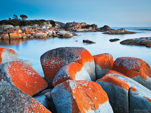 Les Bay of Fires en Tasmanie