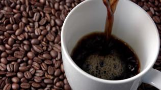 Coffee Talk on Wellness