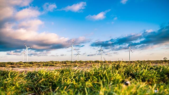 Tuulivoima on ekologista.