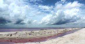 Day trip to Las Coloradas, in Yucatan