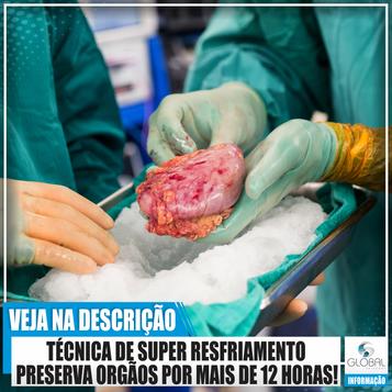 TÉCNICA DE SUPER RESFRIAMENTO PRESERVA ORGÃOS POR MAIS DE 12 HORAS