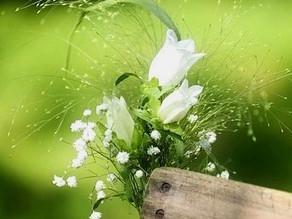Masterclass: La proporcionalidad aplicada al diseño floral.