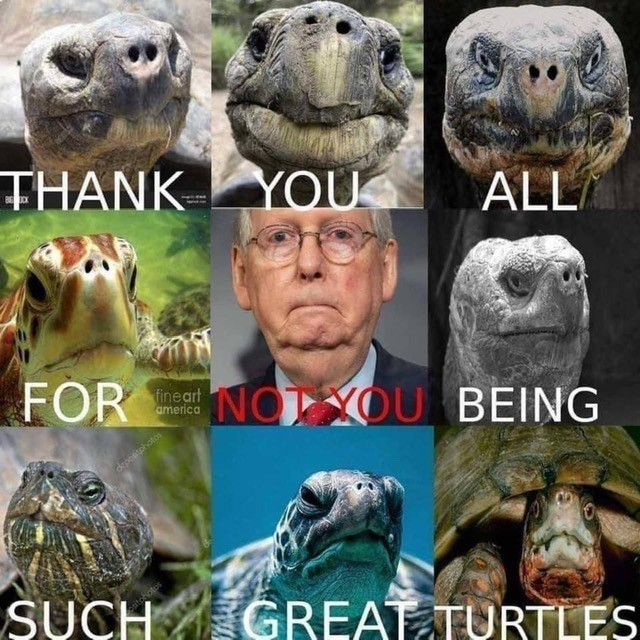Funny Mitch McConnell Memes