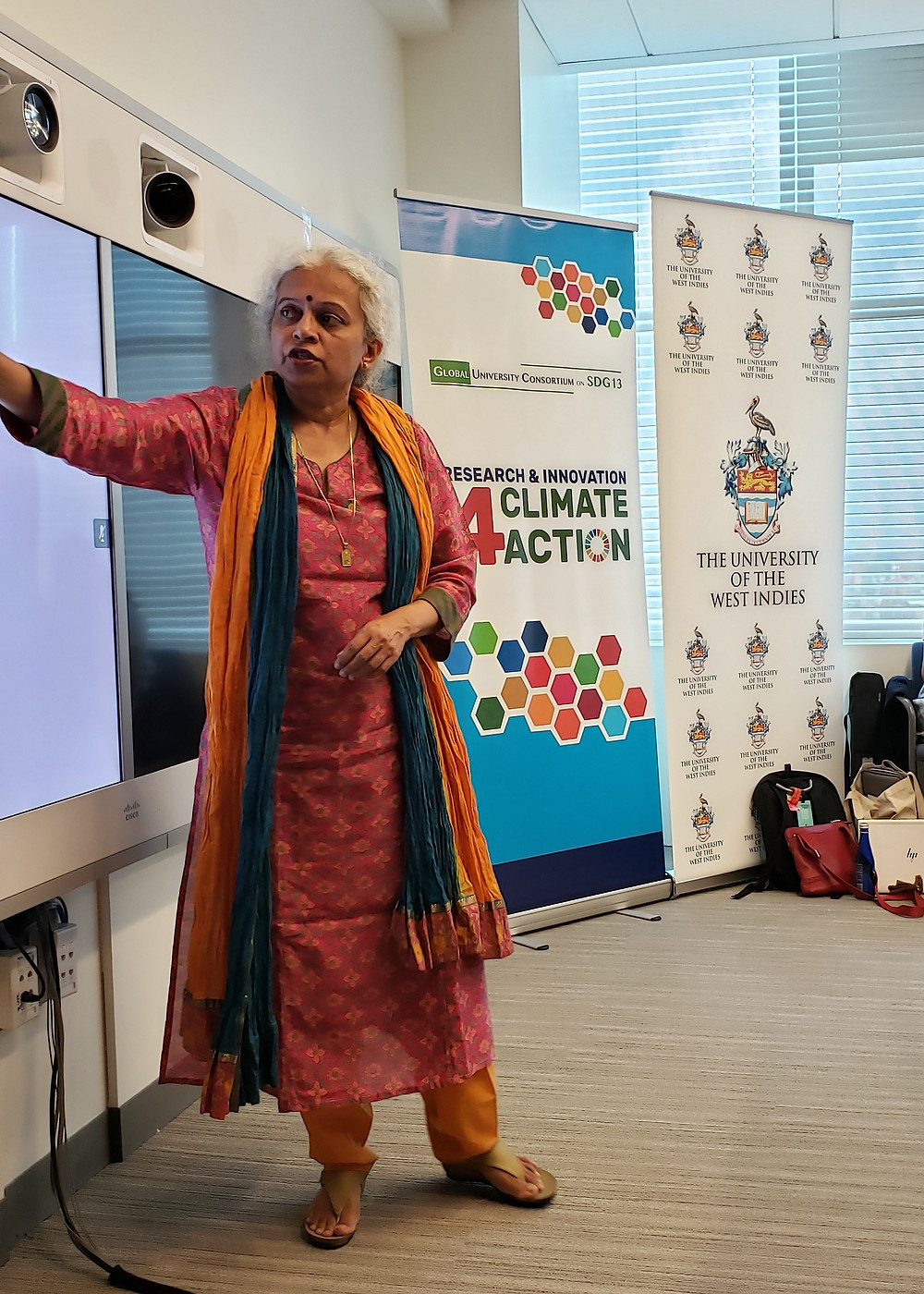 Dr. Leena Srivastava of the TERI School of Advanced Studies demonstrating the synergies between the social sciences and the climate agenda.