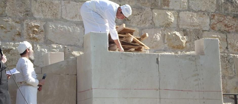 Sanhedrin to Reenact Noah's Sacrifice