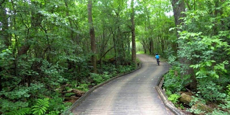nuns island park bike route forest