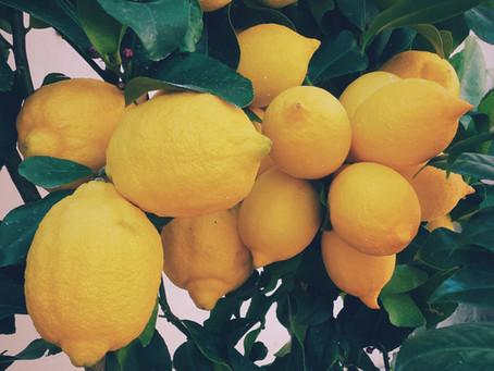 Health Benefits of Lemon (C. limon)