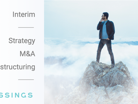 Are you looking for the uncomparable? Interim candidates in Strategy, M&A or Restructuring.