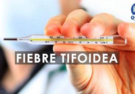 Fiebre Tifoidea - Síntomas y Causas