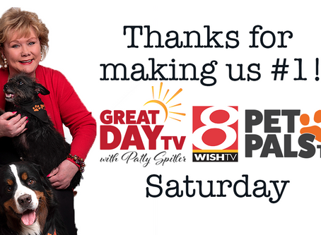 Great Day TV & Pet Pals TV score ratings wins!