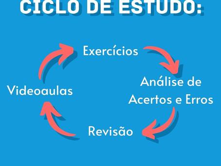 Ciclo do estudo