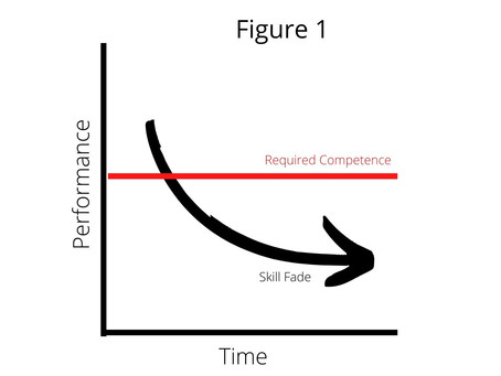 SKILL FADE  -  A brief exploration of medical practice learning applied to the adventure sector.