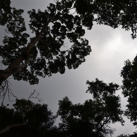 Stranded in Penang- Part 15