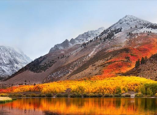 From Wild Willys to Skelton Lake: Trekking the High Sierras