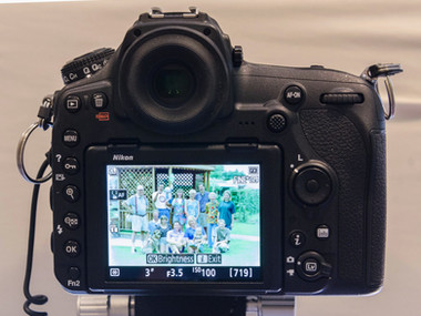 Nikon D850: Digitize Your Negatives as Positives