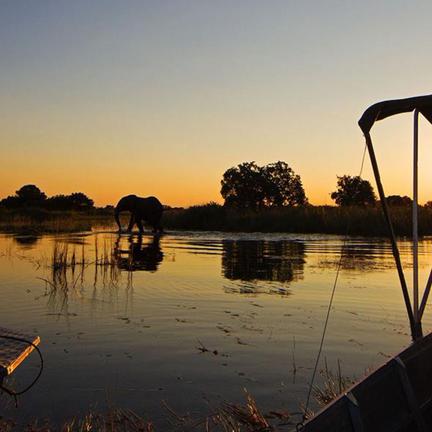 Camp Okavango Okavango Delta, Botswana