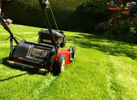 Why Mowing People's Lawns Is One Of My Favorite Ways To Earn Money