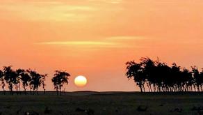 Somalia History - Adale District ( Degmada Cadale) - Hirshabelle - Somger