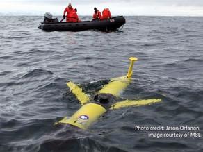 Silbo: El Drone acuático que investigó el atlántico durante los últimos 4 años