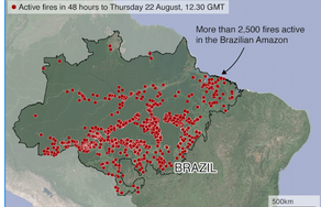 The Amazon in Brazil is on fire...how bad is it?